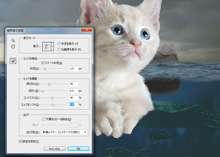 ネコの画像を配置