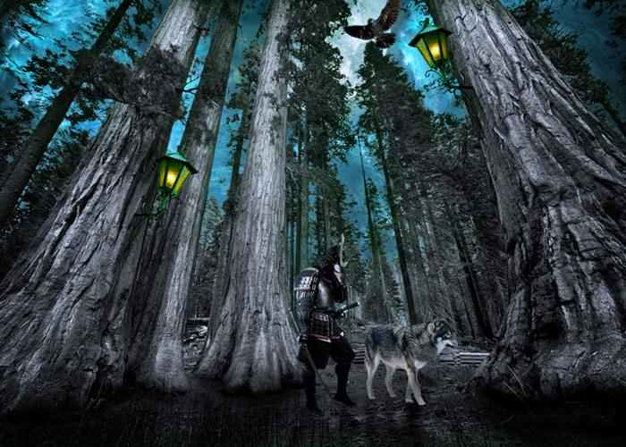迷い込んだ侍とオオカミ
