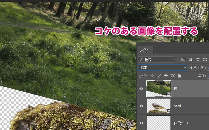 Step 2 - コケの画像を配置