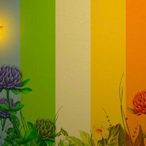 Color Wall Effect1 / カラーウォール