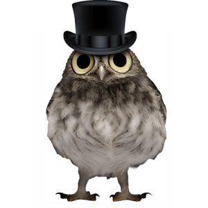 Gentleman Owl Type7 / フクロウ(貴族ハット)