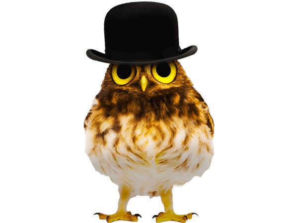 PhotoshopCC-Product-Charactor-Gentleman-Owl-Type1-Thumbnails