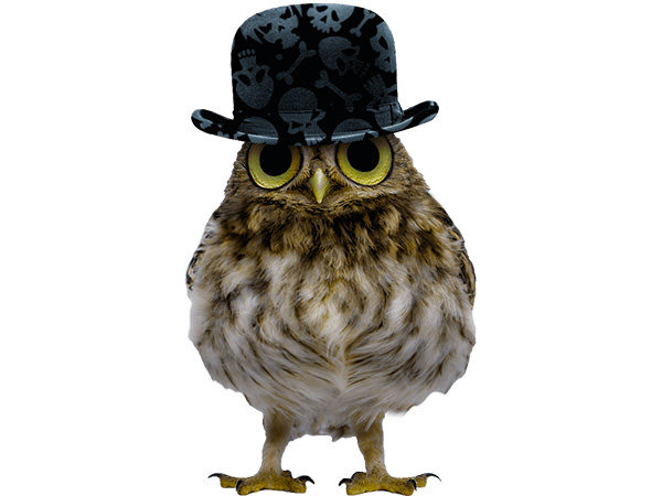 PhotoshopCC-Product-Charactor-Gentleman-Owl-Type4-Thumbnails