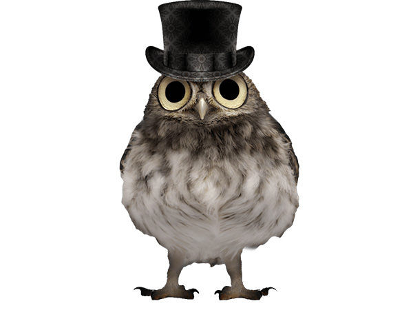 PhotoshopCC-Product-Charactor-Gentleman-Owl-Type8-Thumbnails