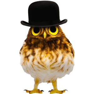 Gentleman Owl Type1 / フクロウ(黒色ハット)