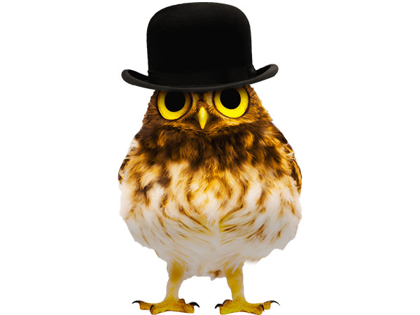 PhotoshopCC-Product-Charactor-Gentleman-Owl-Type1-Thumbnails