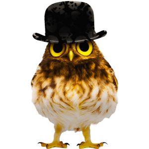 Gentleman Owl Type2 / フクロウ(ドクロハット)