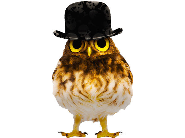 PhotoshopCC-Product-Charactor-Gentleman-Owl-Type2-Thumbnails