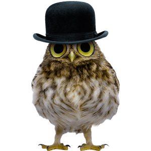 Gentleman Owl Type3 / フクロウ(黒色帽子)