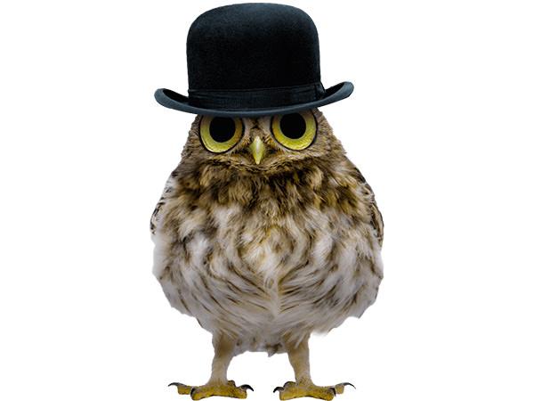 PhotoshopCC-Product-Charactor-Gentleman-Owl-Type3-Thumbnails