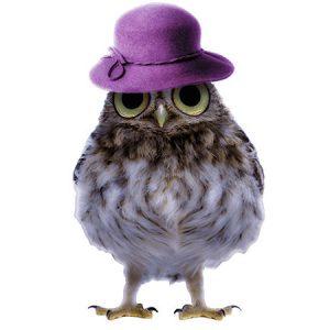 Lady Owl Type5 / フクロウ(貴婦人)