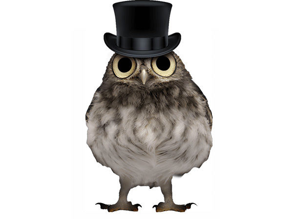 PhotoshopCC-Product-Charactor-Gentleman-Owl-Type7-Thumbnails