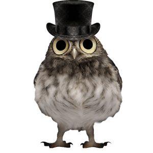 Gentleman Owl Type8 / フクロウ(おしゃれな貴族ハット)