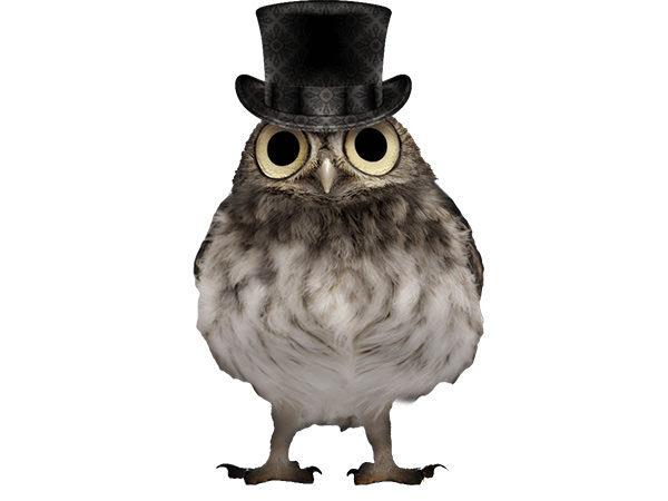 PhotoshopCC-Product-Charactor-Gentleman-Owl-Type8-Thumbnails