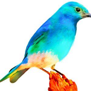 Colorful Birds Painting 2 / カラフル バード2(ペイント風)