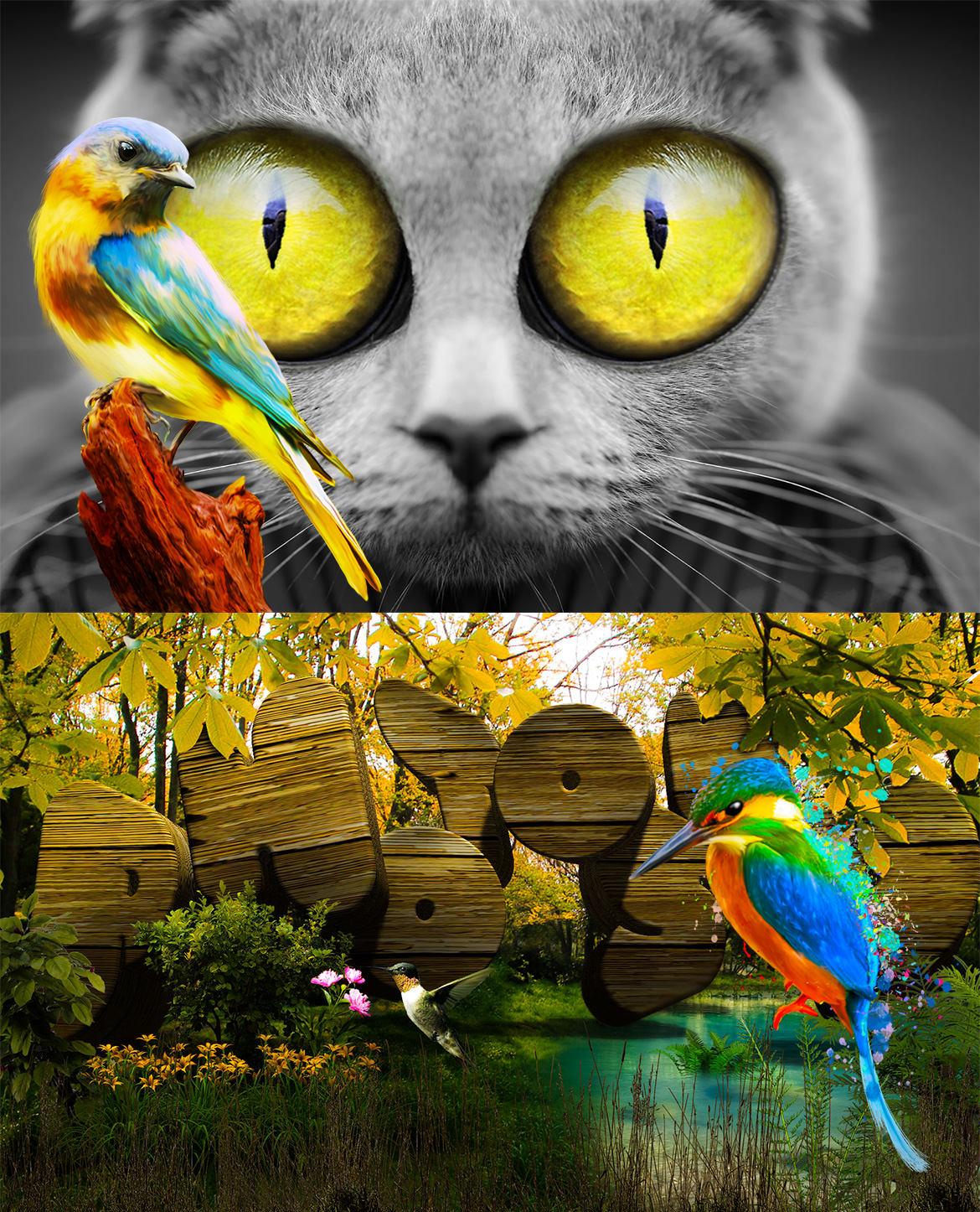 Colorful Birds Painting 3 / カラフル バード3 サンプル