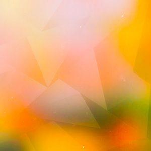 Low Polygon Colorful / ローポリゴン(カラフル)