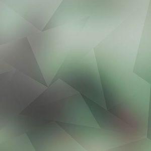 Low Polygon Light Green / ローポリゴン(ライトグリーン)