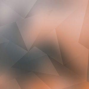 Low Polygon Light Orange / ローポリゴン(ライトオレンジ)
