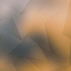 Low Polygon Orange / ローポリゴン(オレンジ)