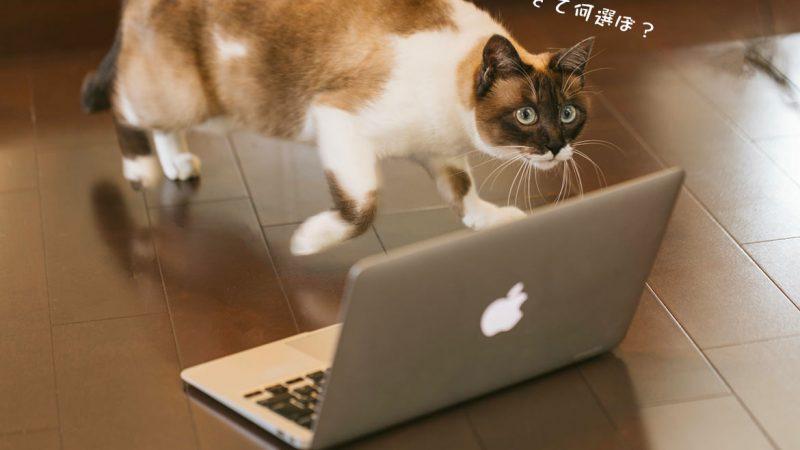 パソコンを買う時のちょっとしたコツ教えます!