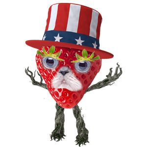 USA Strawberry Man(Type3)/ USAストロベリーマン