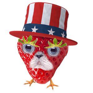 USA Strawberry Man(Type1)/ USAストロベリーマン