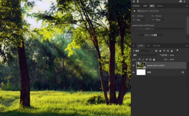 森林の画像を配置する