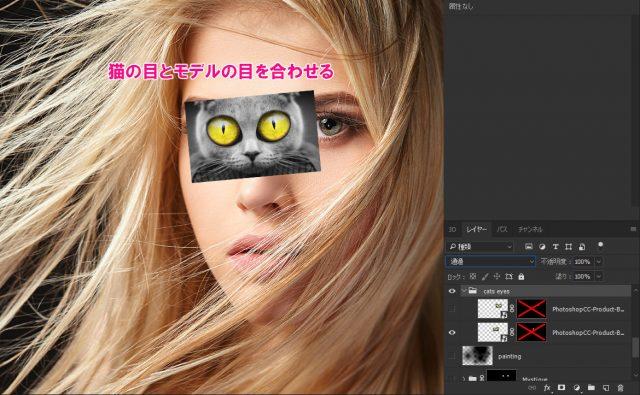 猫の画像を目と合わせる