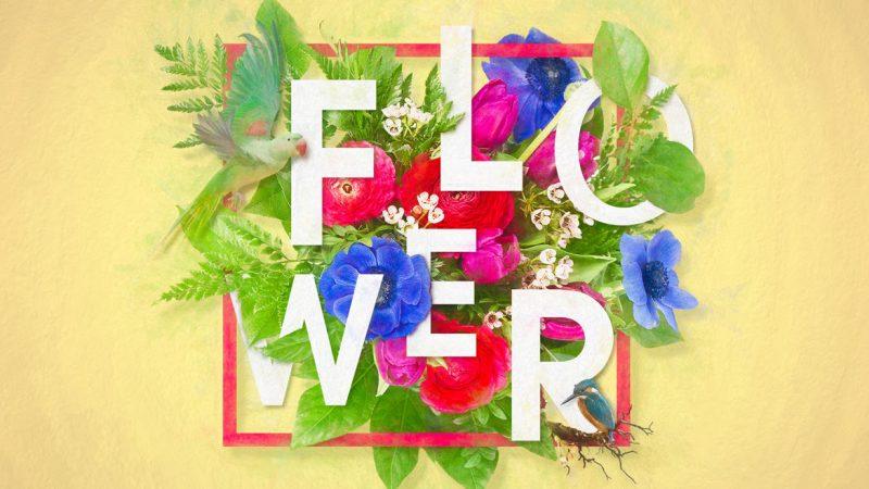 Photoshop 花で彩られたフローラル タイポグラフィ