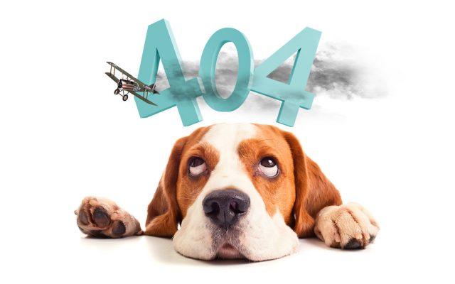 たれ犬404