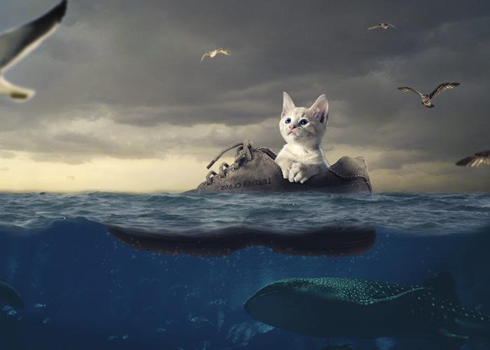 漂流するネコ 完成
