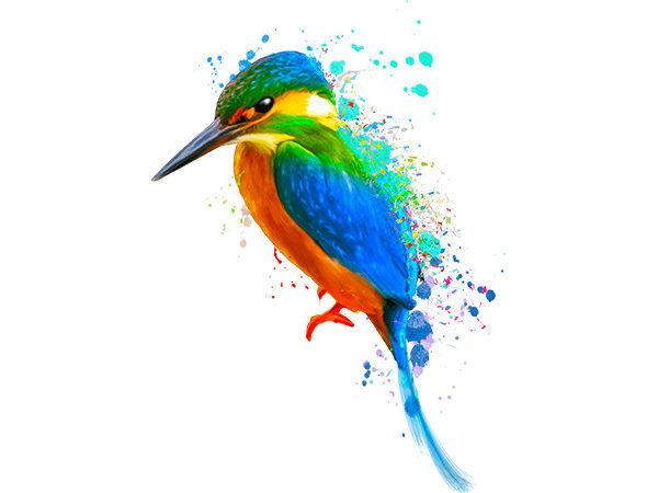 Colorful Birds Painting 3 / カラフル バード3(ペイント風)