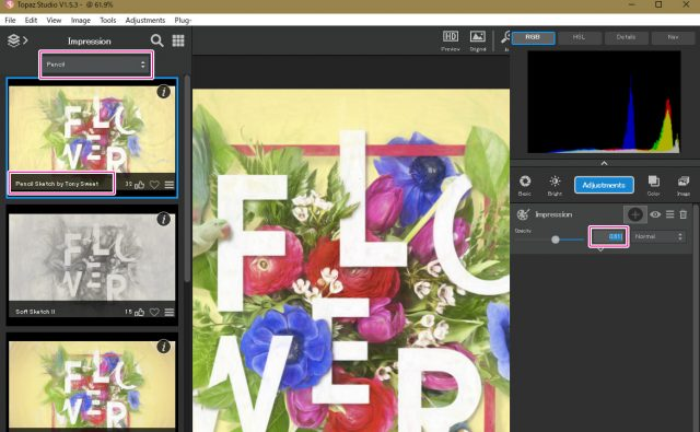 Topaz Studio / Impressionで調整する